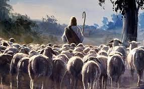 Пастирство. Історико-догматичний аспект